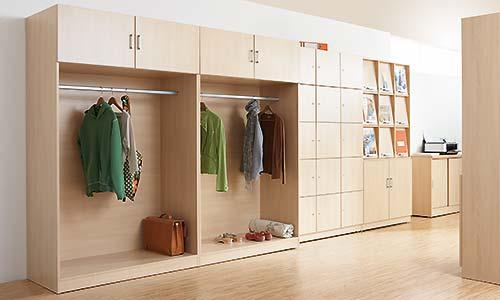 Schrankwand, Garderobe, eigentumsfächer, Fachzeitschriftenschrank